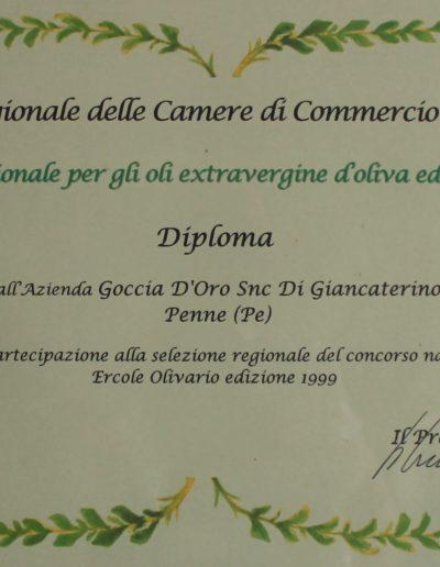 diploma1999