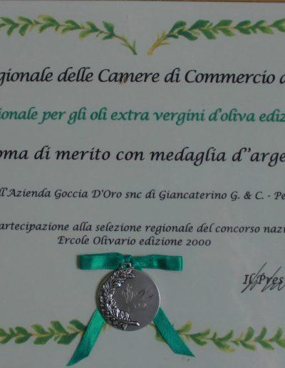medagliaargento2000