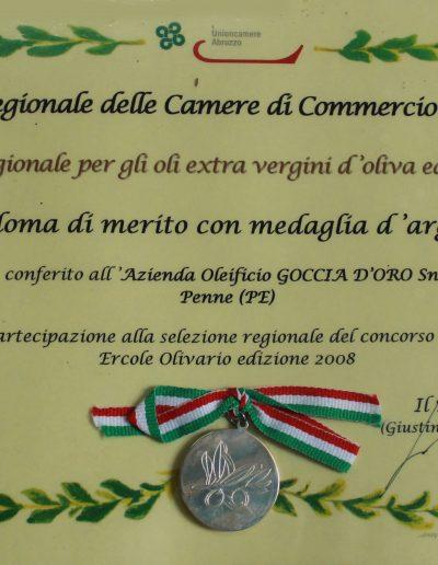 medagliaargento2008